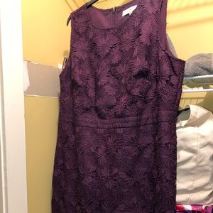 Purple lace Loft dress worn once!